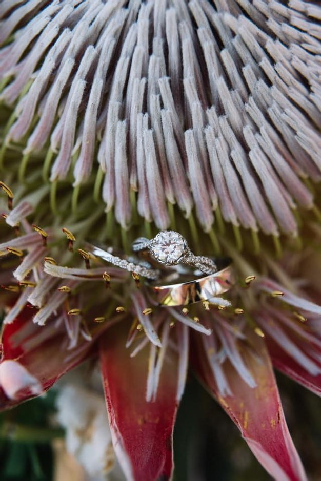 Orlando Florida Federation of Garden Clubs Romantic Wedding Couple Wedding Rings Bouquet
